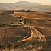 Val D'Orcia VII