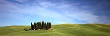 Cypress sentinels, May